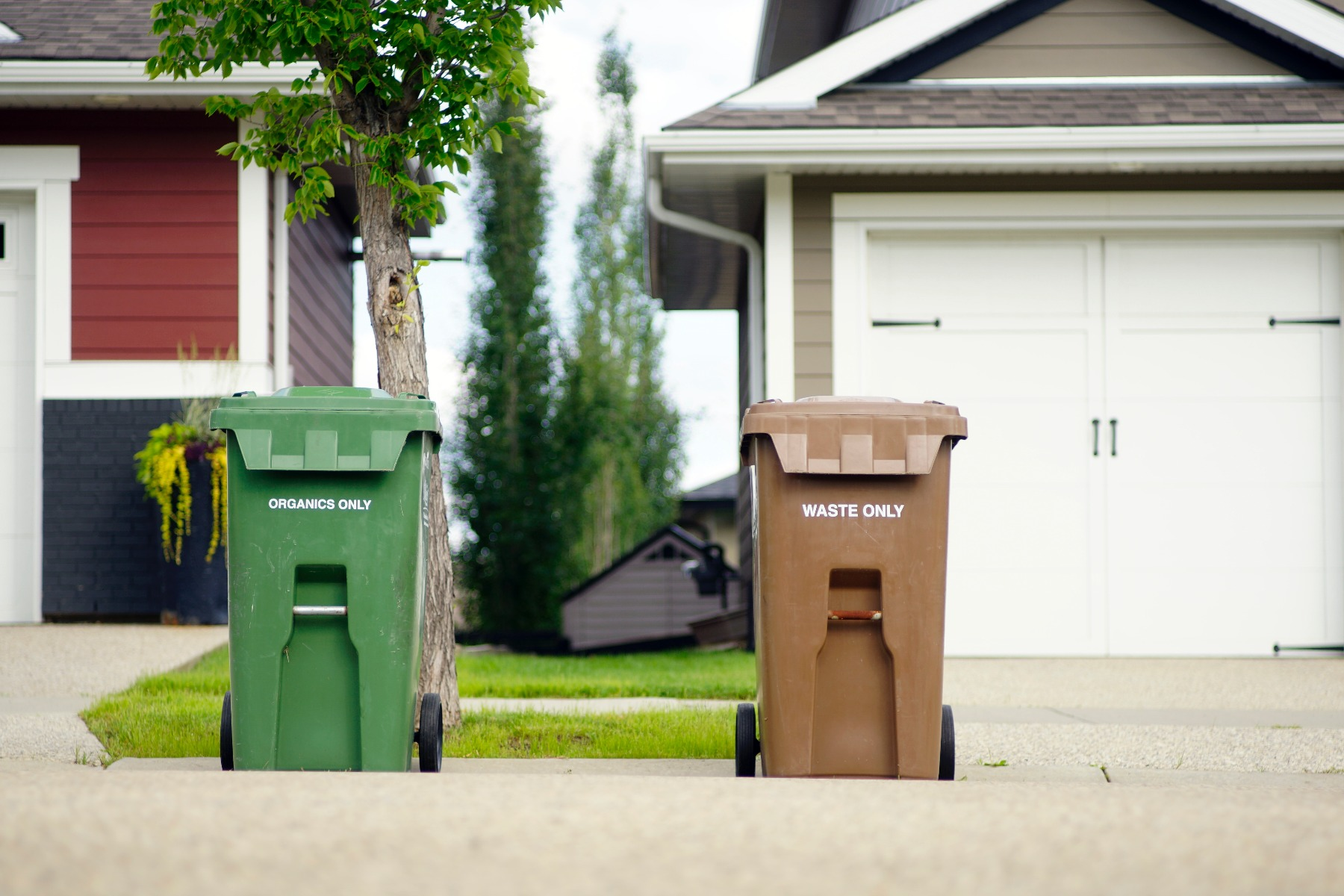 bins in front of house